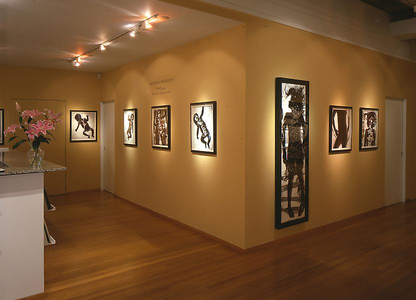 Installation Views - Martha Madigan: Vernal Equinox, Recent Photograms - May 8 – June 30, 2001 - Exhibitions
