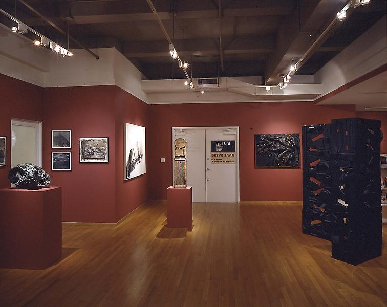Installation Views - True Grit - March 9 – May 6, 2000 - Exhibitions