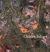 Charles Seliger: Nature's Journal, Recent Painting